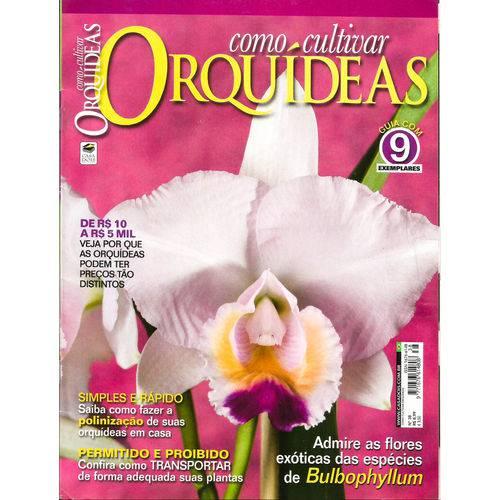 Revista Como Cultivar OrquÃdeas 38