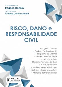 Risco, Dano e Responsabilidade Civil (2018)