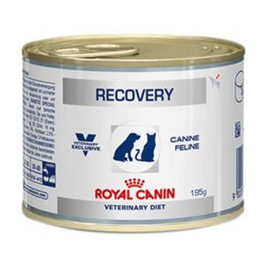 Royal Canin Canine/Feline Recovery 195 G