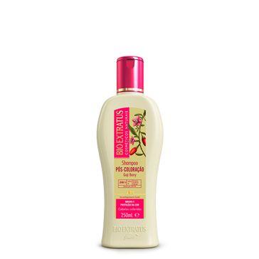 Shampoo Bio Extratus Pós Colorção 250ml