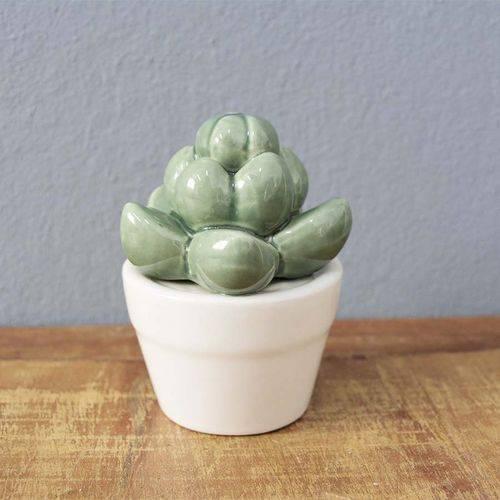Suculenta Echeveria em Vaso Decorativo Cerâmica - 9,5x7 Cm - Cor Branco - 41178