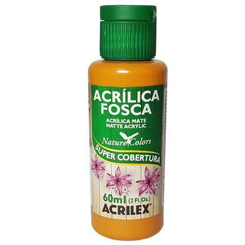Tinta Acrílica Amendoa Acrilex (60ml)