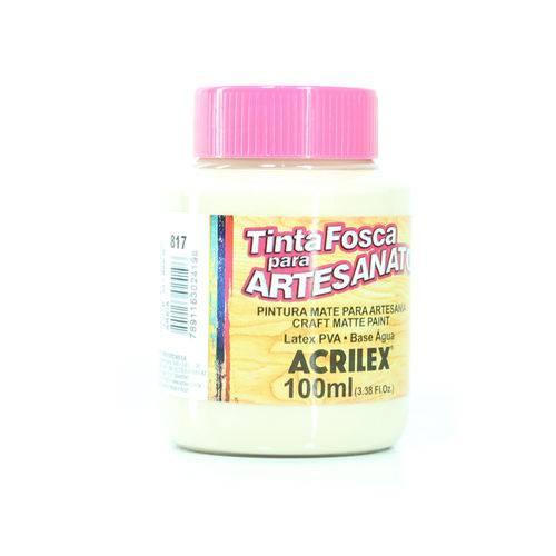Tinta Pva Fosca para Artesanato 100ml - Acrilex-817- Areia
