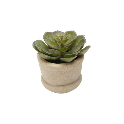 Vaso com Suculenta 10,1cm