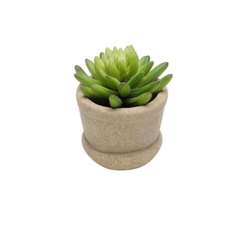 Vaso com Suculenta 9,7cm