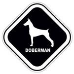 Adesivo Doberman
