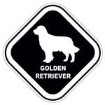 Adesivo Golden Retriever