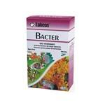 Alcon Bacter 10 Cápsulas
