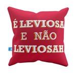 Almofada Decorativa é Leviosa e não Leviosá - Hp Pelúcia 40x40 Almofadageek