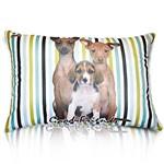 Almofada Raças - Pinscher com Beagle (Listras Verde e Preto) - Bagdog