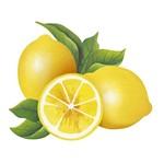 Aplique Decoupage Litoarte APM8-1092 em Papel e MDF 8cm Limões