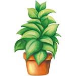 Aplique Decoupage Litoarte APM8-1183 em Papel e MDF 8cm Folhagem Planta
