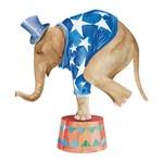 Aplique Decoupage Litoarte APM8-545 em Papel e MDF 8cm Elefante de Circo