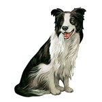 Aplique Decoupage Litoarte APM8-653 em Papel e MDF 8cm Cachorro Border Collie