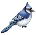 Aplique Decoupage Litocart LMAM-077 em Papel e MDF 7cm Pássaro Azul