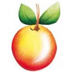 Aplique Madeira e Papel Fruta Laranja LMAPC-119 - Litocart