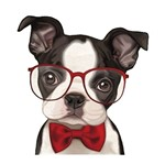 Aplique MDF Decoupage Litocart LMAM-052 em Papel e MDF 7x7cm Cachorro de Óculos