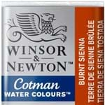 Aquarela em Pastilha Cotman Winsor e Newton Avulso BURNT SIENNA 074