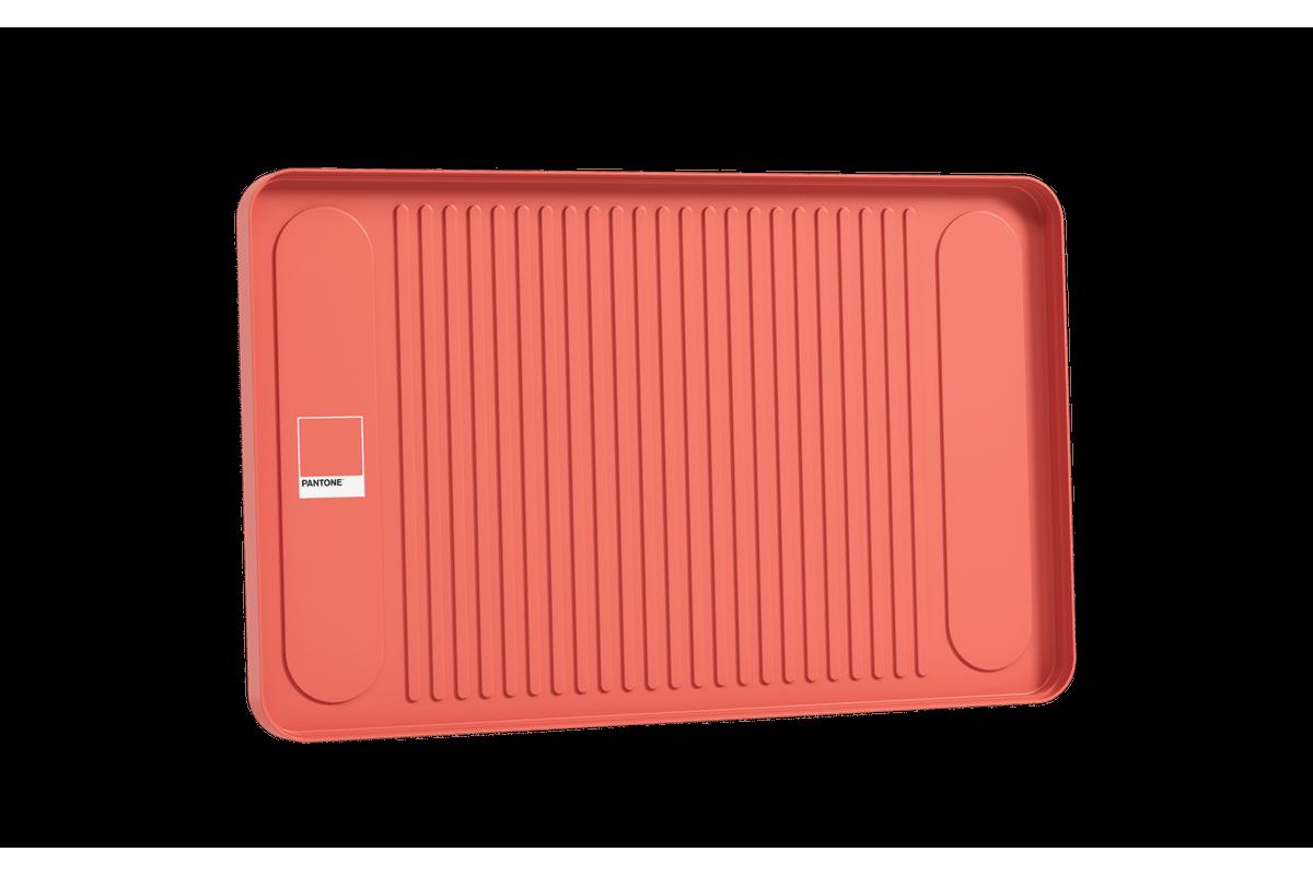 Bandeja Flat 42 X 26 X 2 Cm Coral Pantone Coza