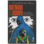 Batman Robin: Cavaleiro das Trevas Vs Cavaleiro