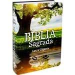 Bíblia Nova Almeida Atualizada Letra Gigante Reflexo