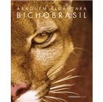 Bicho Brasil - Tordesilhas