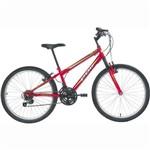 Bicicleta Polimet Delta Mtb Aro 24 V-Brake 18v