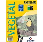 Bloco Vegetal A4 60g S/Margem 50f 0033 Canson