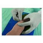 Braço para Punção Venosa Pediátrica Avançada Anatomic - Código: Tzj-0501-n