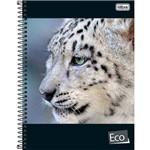 Caderno Espiral Capa Dura Universitário Eco 1 Materia 96 Folhas