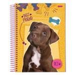 Caderno Pet Cachorrinho - Amarelo - 10 Matérias - Jandaia