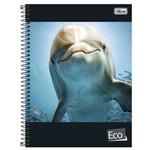 Caderno Universitário 1x1 96 Fls C.D. Tilibra - Eco 4
