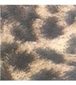 Calcinha Cotton Fio Dental Estampada 646 Ranjado Preto e Coral P