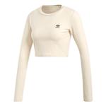 Camiseta Adidas Crop Sc Bege G