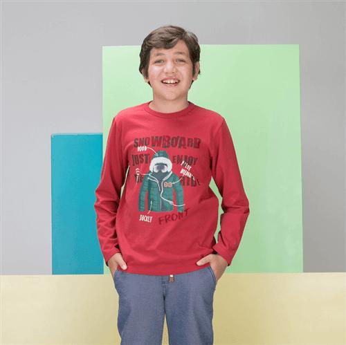 Camiseta M/l Avulso Vinho/14