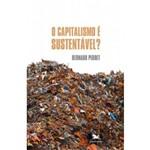 Capitalismo é Sustentável (o)?