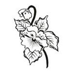 Carimbo em Borracha Flor Amor Perfeito Clp-044 - Litoarte