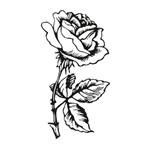 Carimbo em Borracha Rosa Clp-005 - Litoarte