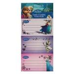 Cartela de Etiquetas Frozen 12 Un Jandaia