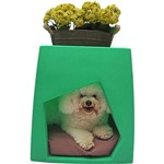 Casinha para Cachorro Decorativa Verde Pet Pequeno - Meemo