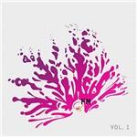 CD Diversos - Coletânea OI Fm - Volume 1