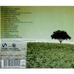 CD Globo Rural: João Mulato & Pardinho