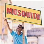 CD - Mosquito - Ô Sorte