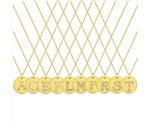 Colar Personalizado Disco Charm Iniciais Banhado a Ouro 18k