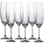 Conjunto com 6 Taças de Cristal para Champanhe Roberta 220ml Bohemia