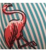 Conjunto de Calcinha e Sutiã Menina Moça Nadador Estampado - 201 Flamingos Vermelhos com Listras Verde e Branco M