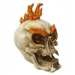 Crânio Caveira Cabelo Mocaino de Fogo Decoração.