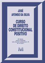 Curso de Direito Constitucional Positivo (2019)