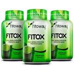 Detox Fitox: Emagrecimento + Definição + Saúde!