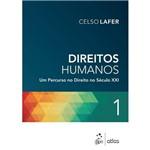 Direitos Humanos Vol. 1